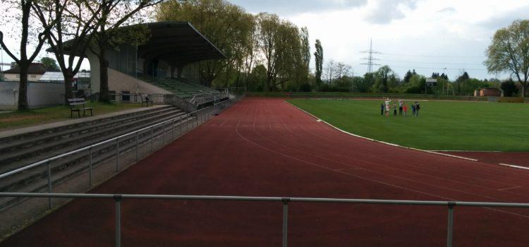Frisbeeflächen am Hessentag